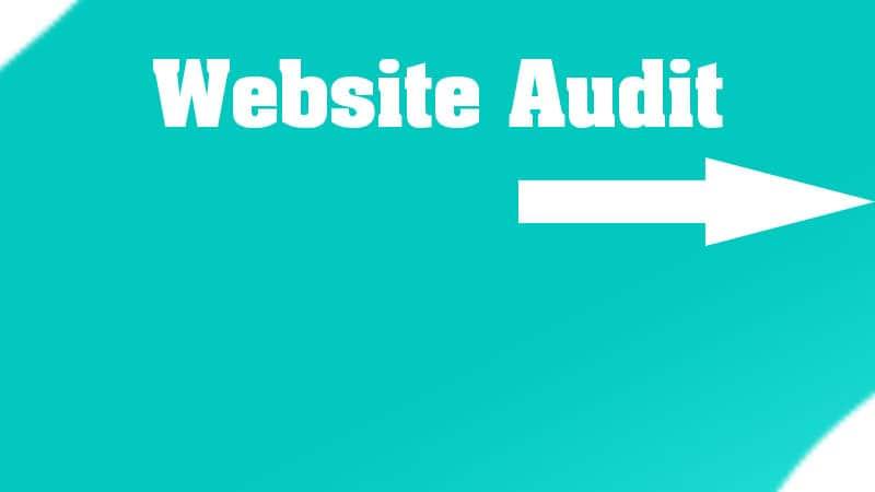 2. Website Audit